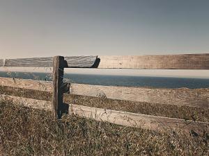 fence-238475_1920